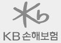 KB손해배상책임보험